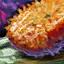 https://wiki.guildwars2.com/images/1/14/Koi_Cake.png