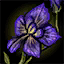 Shing Jea Orchid Petal.png