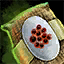 Asparagus Seed Pouch.png