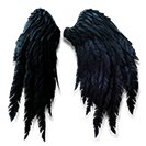 Black Wings Glider Combo.png