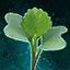 Germinate Cabbage.png