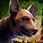 Mini Brindle Basenji.png