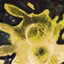 House a Tiny Yellow Ooze.png