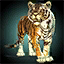 Mini Tiger.png