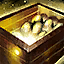 Incubation Box.png