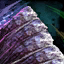 Amalgamated Gemstone.png