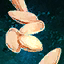 Butternut Squash Seeds.png