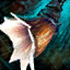 Krait Whelk.png