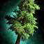 Thick Drizzlewood Coast Tree Token.png