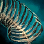 Primordial Leviathan Rib Cage- Left Curved.png