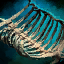 Primordial Leviathan Rib Cage- Curved.png