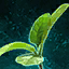 Germinate Spinach.png