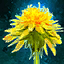 Lovely Dandelion.png
