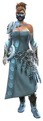 Wolfborn armor norn female front.jpg