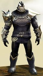 Elegy armor (medium) norn male front.jpg