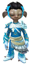 Luminescent armor (light) asura male front.jpg