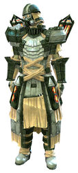 Forgeman armor (light) sylvari male front.jpg