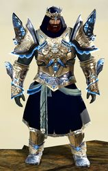 Mistforged Glorious Hero's armor (light) norn male front.jpg