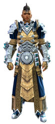 Armor of Koda (light) human male front.jpg