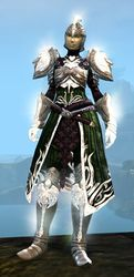 Radiant armor (medium) sylvari female front.jpg