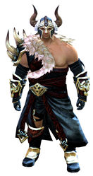 Braham's armor norn male front.jpg