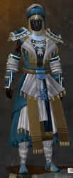 Elonian armor (light) sylvari male front.jpg