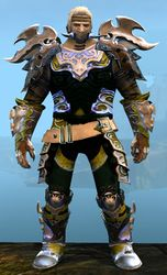 Mistforged Triumphant Hero's armor (medium) norn male front.jpg
