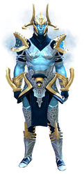 Zodiac armor (light) human male front.jpg