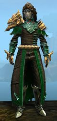 Refined Envoy armor (medium) sylvari male front.jpg