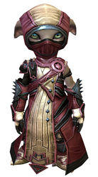 Inquest armor (medium) asura female front.jpg