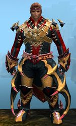 Perfected Envoy armor (light) norn male front.jpg