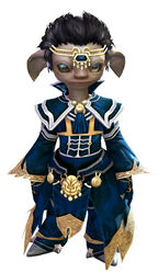 Council Ministry armor asura male front.jpg