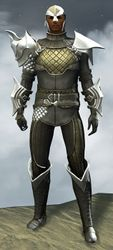 Elegy armor (medium) human male front.jpg