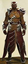 Mist Shard armor (light) human male front.jpg