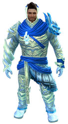 Luminescent armor (light) norn male front.jpg
