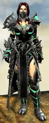 Warbeast armor (medium) norn female front.jpg