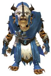 Drover armor charr male front.jpg