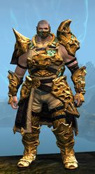 Leystone armor (medium) norn male front.jpg
