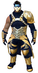 Armor of Koda (medium) norn male front.jpg