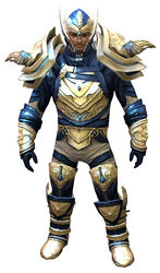 Glorious armor (medium) norn male front.jpg