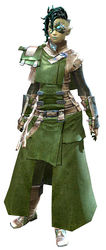 Leather armor sylvari female front.jpg