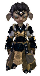 Armor of Koda (light) asura male front.jpg