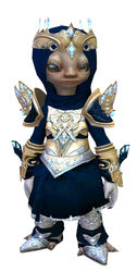 Glorious Hero's armor (light) asura male front.jpg