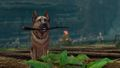 Lucky Dog Harvesting Tool.jpg