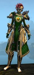 Ornate Guild armor (medium) sylvari female front.jpg