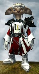 Ornate Guild armor (light) asura male front.jpg