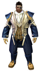 Noble armor norn male front.jpg