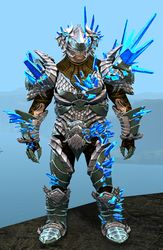 Blossoming Mist Shard armor (heavy) norn male front.jpg