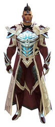 Council Watch armor human male front.jpg
