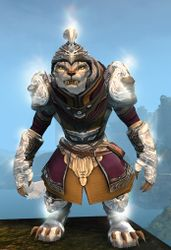 Radiant armor (light) charr female front.jpg